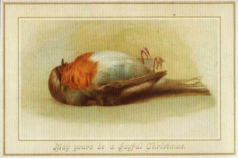 早期的聖誕卡不印聖誕樹,竟印著奄奄一息的鳥啊......。(圖/Outside提供)
