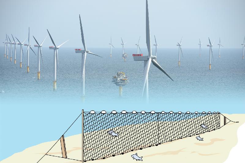 近年政府推動離岸風力發電示範計畫,漁民團體以離岸風機影響漁獲為由,要求業者提供漁業補償金與回饋方案,讓準備參與離岸風電的國際業者,看了直搖頭。(取自safinacenter.org、NHD-INFO@flickr/影像合成:風傳媒)