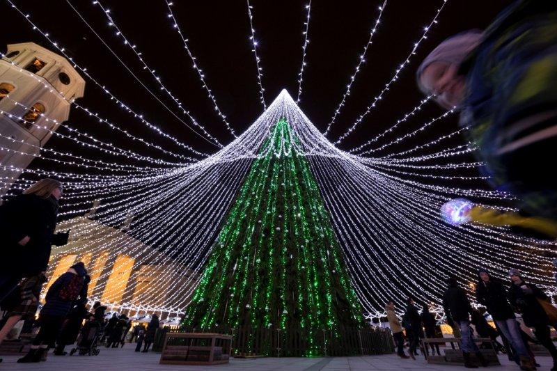 立陶宛用小燈妝點出巨大聖誕樹,非常吸睛。(AP)