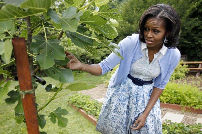 為對抗兒童肥胖問題,蜜雪兒身體力行在白宮建菜園。(美聯社)