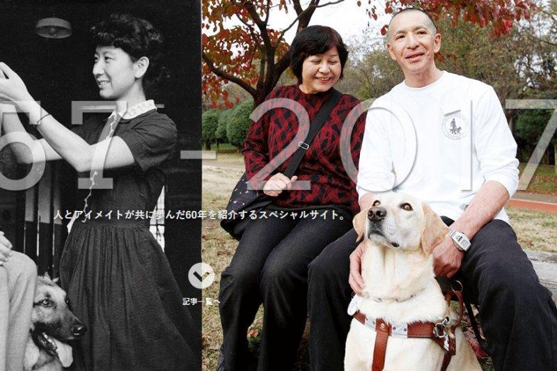 日本導盲犬歷史至今已有60年。(翻攝eyemate官網)