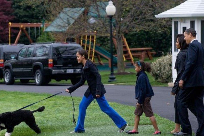 葡萄牙水犬Bo成為這個家庭的一員,並隨「第一家庭」在公共場合亮相。白宮的後花園裏還搭了個小遊樂場。
