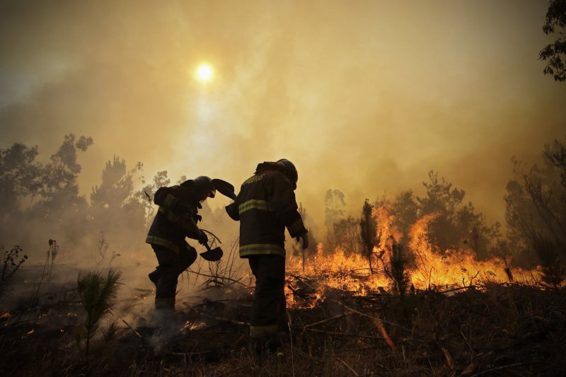 智利2017野火。(美聯社)