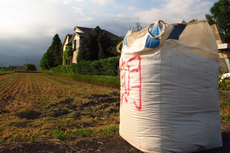 目前農委會規劃「農地農用」,每公頃僅發給2.5萬元綠色補償,全國國土計畫實施後,恐難杜絕農地遭非法使用。(資料照,吳佳玲攝)