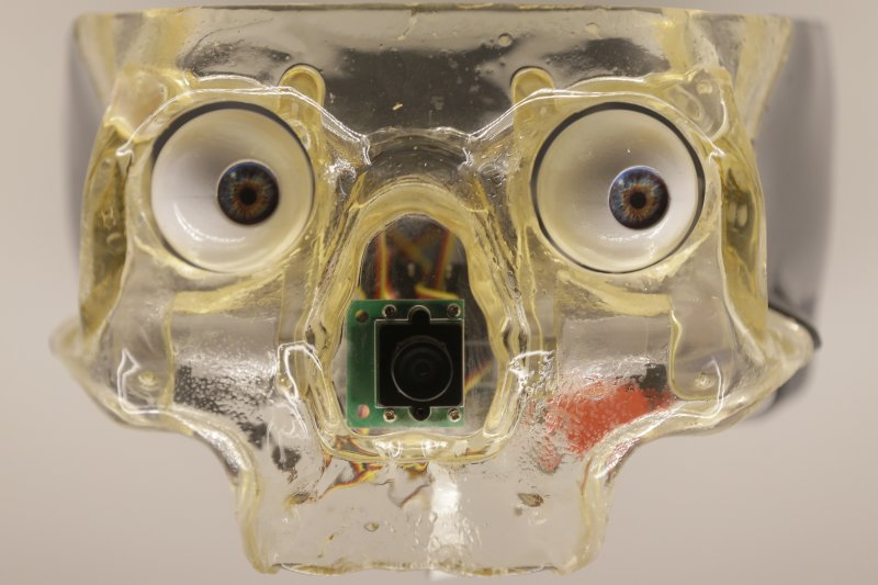 英國倫敦的科學博物館本月起舉辦機器人展覽,這是加拿大藝術家狄默思(Louis-Philippe Demers)打造的機器人人工頭骨(AP)