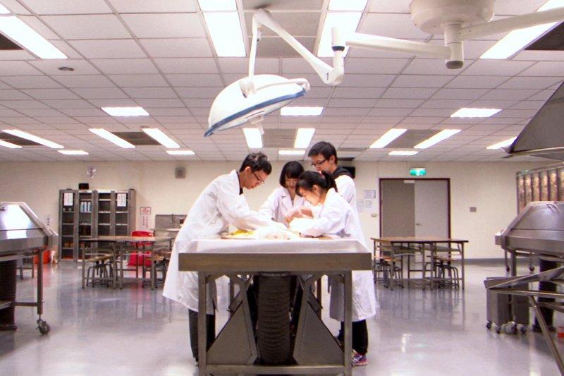 輔大醫學系學生從一堂解剖課,看見生命的真實意義。(圖/牽猴子整合行銷股份有限公司提供)