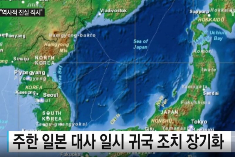 除慰安婦問題外,獨島(日本稱竹島)主權爭議也是日韓關係長久以來未解的難體。(翻攝影片)