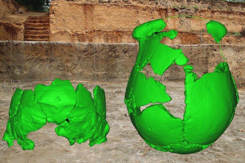 考古學家對「許昌人」顱骨的虛擬復原(EurekAlert!)