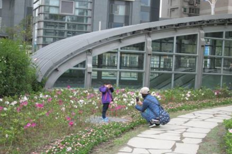 台北杜鵑花季。(圖取自北市政府官網)