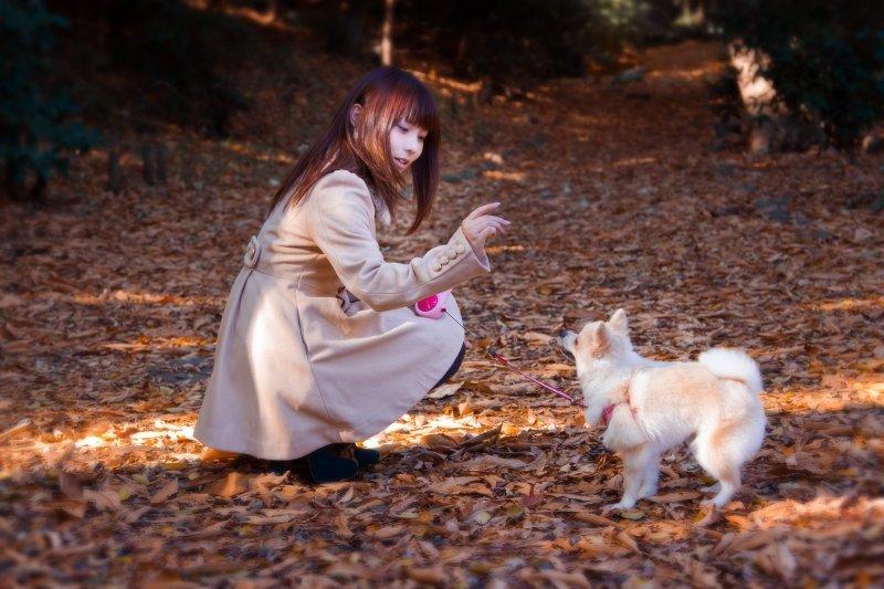 你知道,狗狗尾巴不舉不見得是不開心,可能得了尾巴不舉症?(圖/pakutaso)