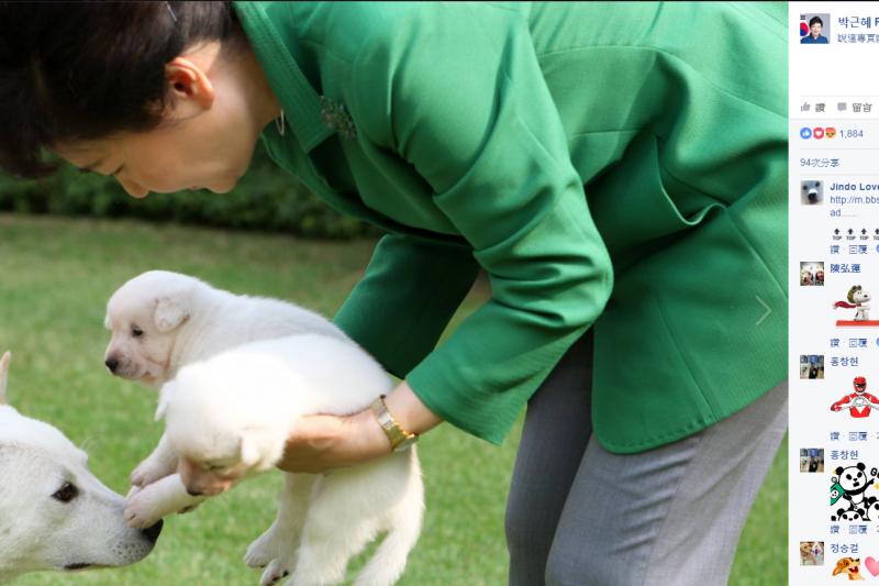 朴槿惠常在臉書曬毛小孩照片,離開青瓦台時卻被爆出棄養。(圖/取自朴槿惠臉書)