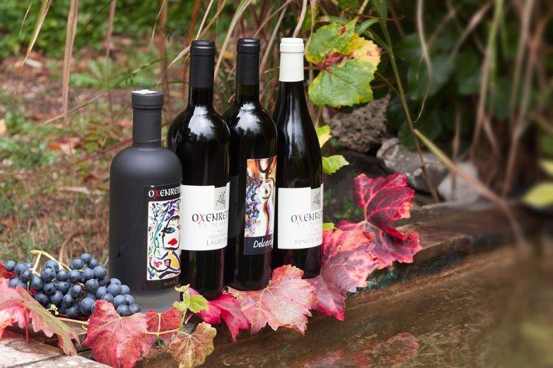義大利深度旅遊,可以從釀酒與飲食文化下手。(圖/stux@pixabay)