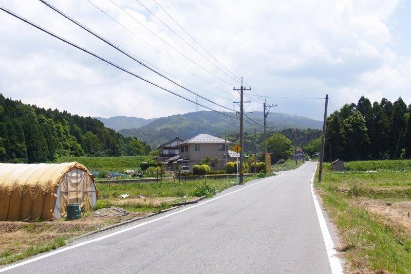 辭掉人人稱羨的科技工作,到鄉下去種苦瓜,他為何會做這樣的選擇?(示意圖/takao goto@Flickr)