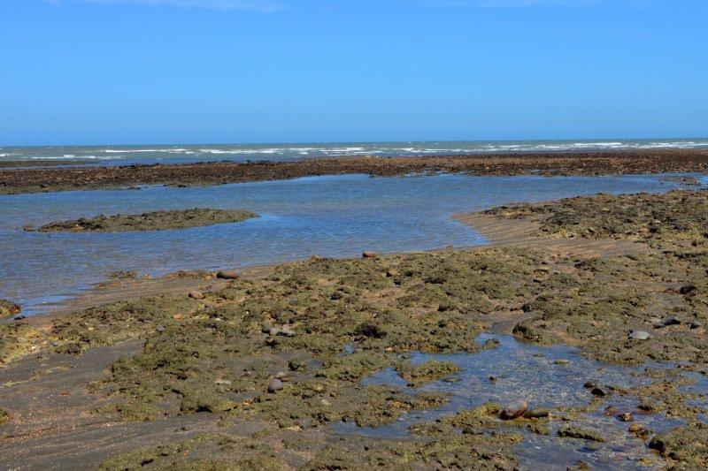 桃園藻礁海岸。(圖/桃園市政府提供)
