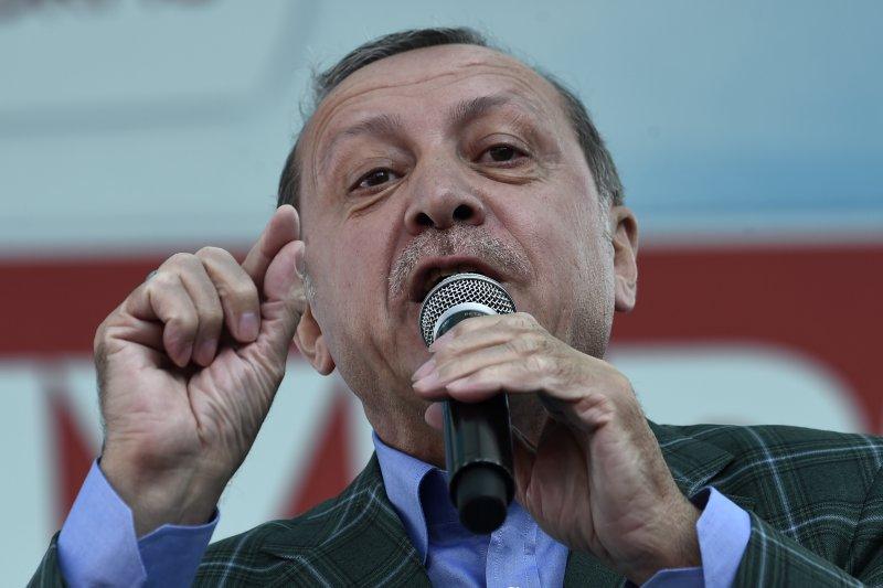土耳其總統艾爾多安支持修憲,將土國由內閣制改為總統制。(美聯社)