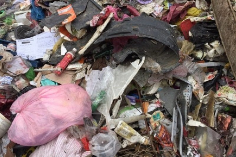 生態保育雖重要,但認清破壞生態的原兇才是關鍵。(圖/擷取自新竹縣環保局)