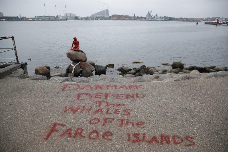 丹麥「小美人魚像」30日被不明人士潑了整身紅漆,還在地板上還用英文寫下「丹麥,捍衛法羅群島的鯨魚」。(美聯社)
