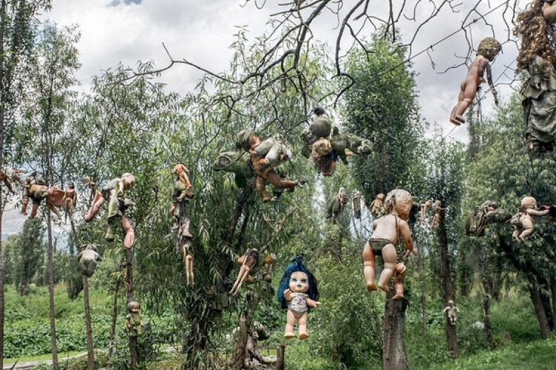 滿布殘缺娃娃的森林,光看就讓人直發毛...(圖/遠見雜誌提供)