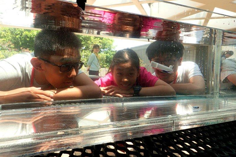 年齡最小的參賽隊伍,在水缸中測試「水下滑翔機」。(圖/海科館提供)