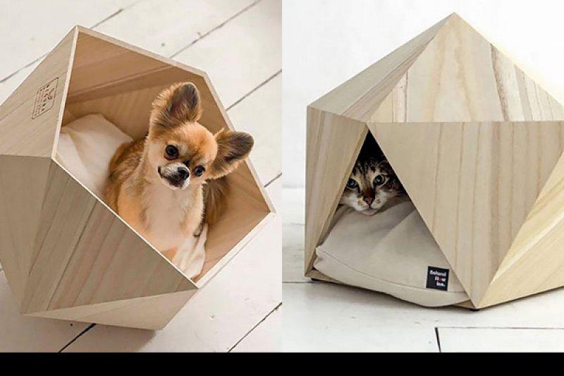 寵物的窩也是家裡佈置的一環。(圖/寵毛網)