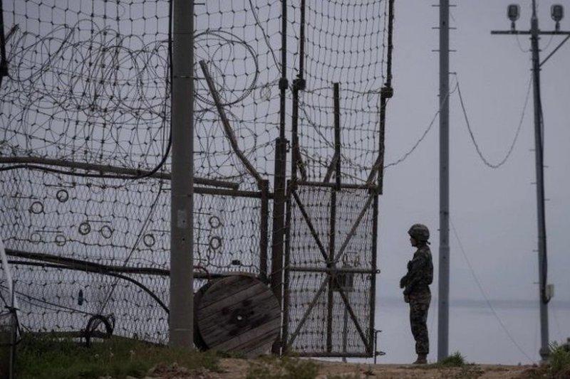 南北韓邊境防衛森嚴。(BBC中文網)