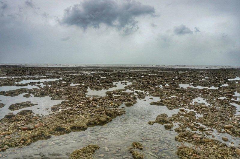 觀塘開發案突顯老舊環評沒有退場機制,導致10多年前通過的舊環評案,能透過不會被駁回的環現差制度不斷「苟延殘喘」,圖為環保團體發起搶救桃園大潭藻礁活動。(資料照,圖取自珍愛桃園藻礁臉書)