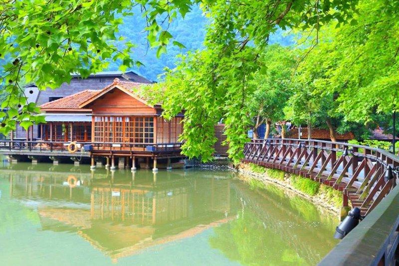 南投不是只有日月潭、忘憂森林,還有許多美景值得好好尋訪!(圖/車埕 遊客中心@facebook)