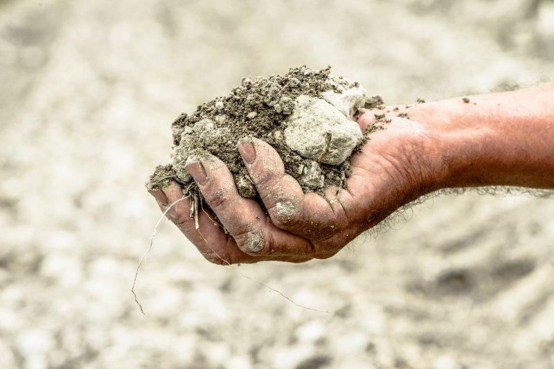 富含水分的白堊質土壤,造就干邑境內大香檳區、小香檳區出產的葡萄品種格外珍貴(圖/maldaz_fotos@flickr)