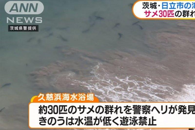位於茨城縣日久市的「久慈濱海水浴場」,19日傳出鯊魚出沒消息。(翻攝影片)