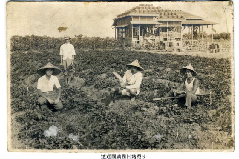 日治時期農人在逍遙園中務農一景。(圖日人二角龍藏提供)