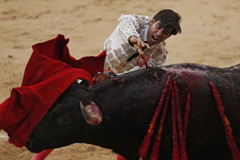 鬥牛是西班牙的傳統文化,但西班牙自治區巴利阿里群島24日立法禁止血腥鬥牛(AP)