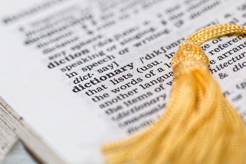 「我完全無法理解,為何在國際化資訊爆炸的時代,會下修我國的高中生的英文單字學習量?」(示意圖,取自Pixabay)