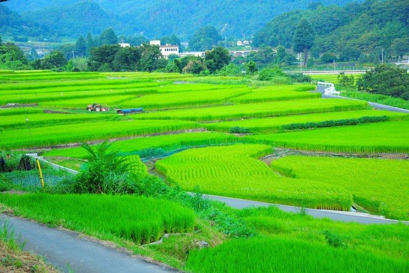 在日本數一數二窮困的神子原地區,因為一位公務員而翻轉了命運。(圖/colorstage@pixabay)