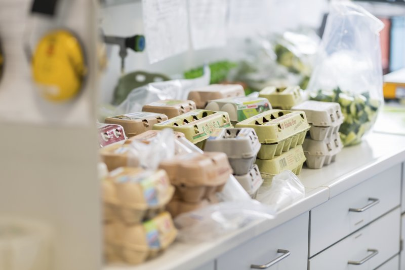 主計總處專門委員徐健中指出,去年同期爆發戴奧辛蛋風波,7月基期正處最低點,因此在基期較低的影響下,7月雞蛋的年增率就特別明顯。(資料照,美聯社)