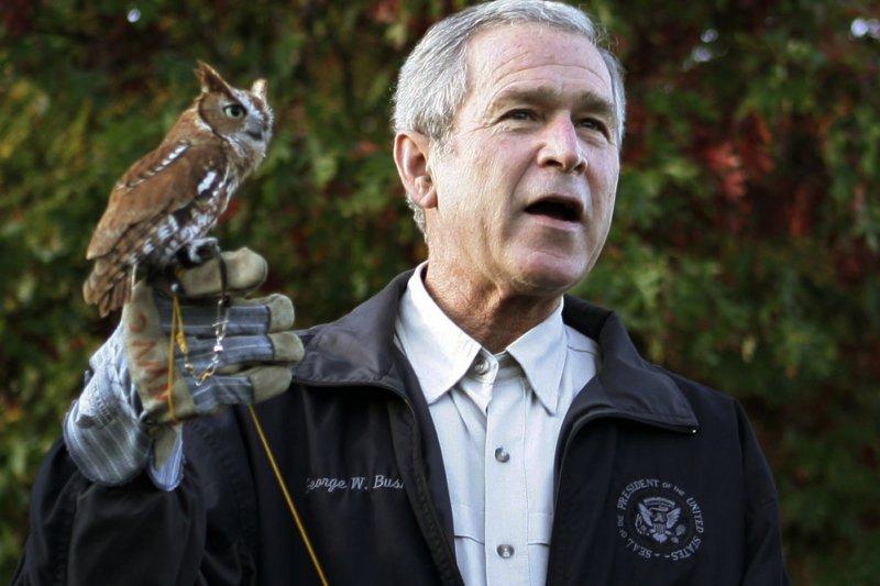 小布希總統與貓頭鷹。(美聯社)