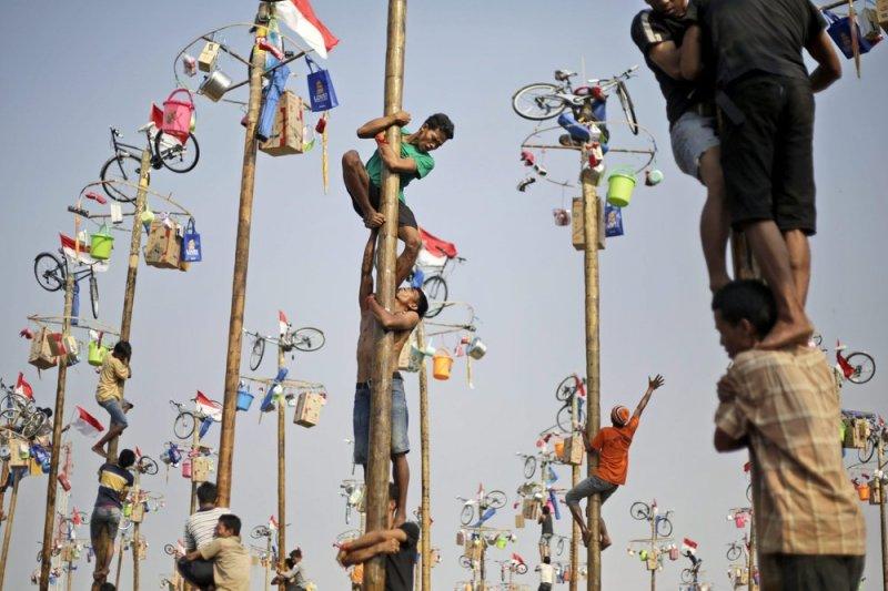 爬檳榔樹比賽是印尼特有的國慶活動,參賽者得努力爬上樹頂,才能獲得豐富獎品。(AP)