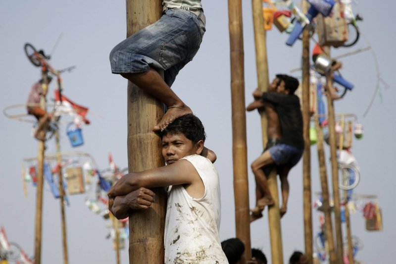 爬檳榔樹比賽是印尼特有的國慶活動,考驗參賽者的團隊默契。(AP)