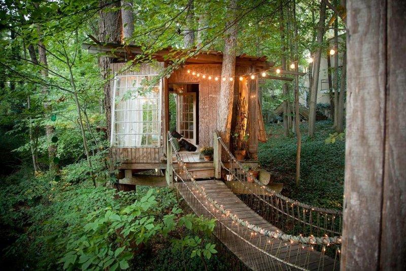 位於美國亞特蘭大郊區一座樹木繁盛的後院裡,卻有14萬7千多人將其存為Airbnb的願望清單,(圖/Shopping Design提供)