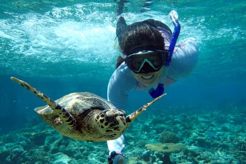 學好技巧,與海龜拍出一張完美的合照。(圖/聯經出版提供)