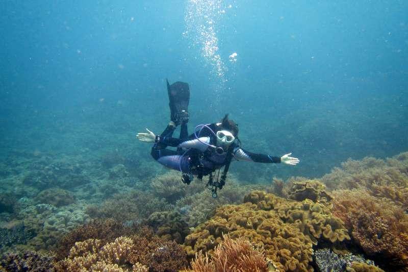 水下攝影首先要掌握幾個基本要點,取景、構圖、光線、角度以及後製。(圖/聯經出版提供)