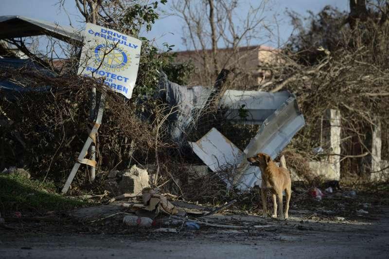 艾瑪颶風重創法屬聖馬丁,爆出優先撤離的對象是白人觀光客,掀起種族主義問題(AP)