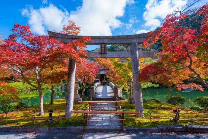 每到秋天,京都境內的各大古剎與風雅庭園紛紛楓紅迎秋,堪稱絕景寶庫。(圖/ZEKKEI Japan提供)