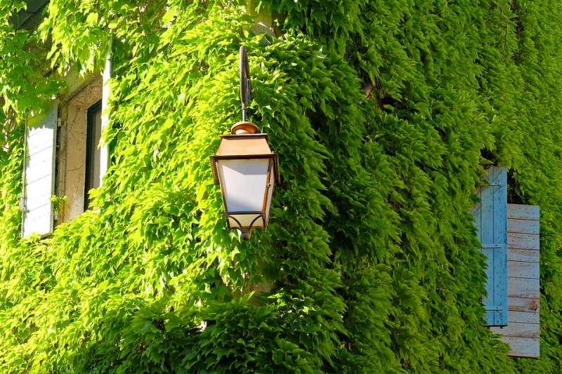綠生活應該回頭過來好好關注自己,達到物質的精簡、生活的舒適與永續性。(圖/djedj@pixabay)