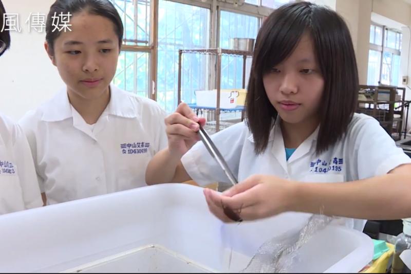 中山女中的學生,在這堂課後紛紛愛上了蟑螂。(圖/擷取自網路)