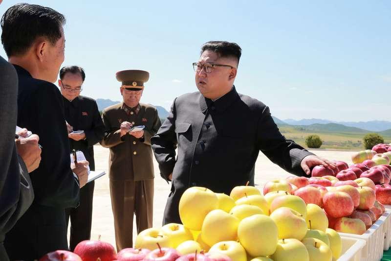 2017年9月,北韓最高領導人金正恩視察農業生產。(AP)