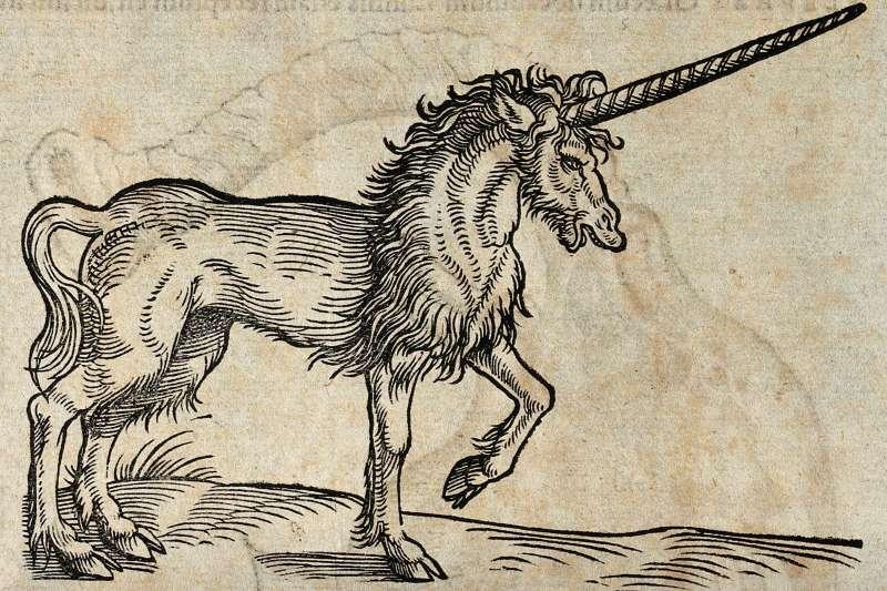 神秘動物學者專門研究未知生物,雖被視為偽科學,但其實對動物保育甚有貢獻。(圖 / Wellcome Images @wikimedia commons)
