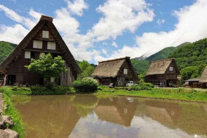 位於岐阜縣世界遺產「白川郷」的合掌造代表「和田家」是國家指定重要文化財,更開放遊客進入合掌造當中參觀。(圖/MATCHA提供)