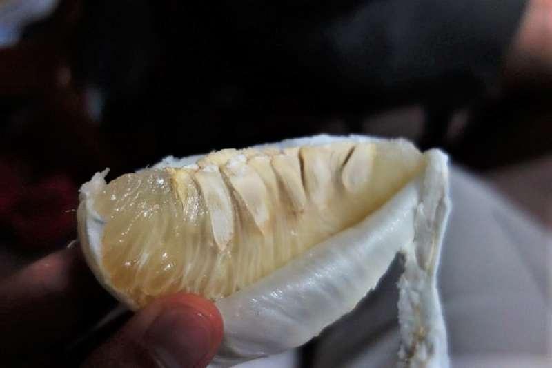 服藥的民眾注意了,有些藥物與柚同吃會產生嚴重副作用,中秋務必控制分量,別吃太多柚。(圖/Yun Huang Yong @flickr)