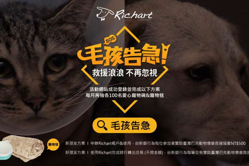 Richart邀請民眾一起守護臺灣浪浪(圖/台新銀行提供)