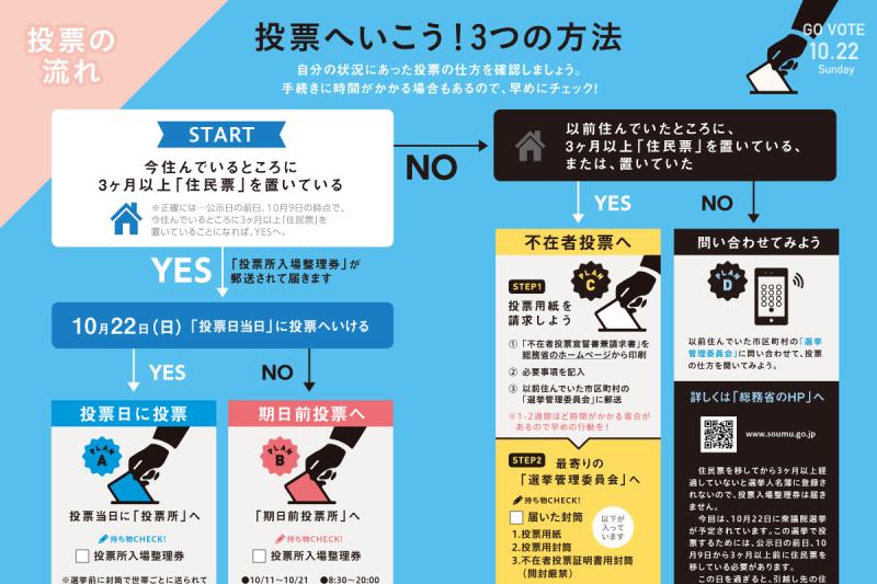 詳細投票流程。(翻攝自民黨官網)